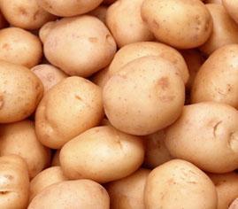 Patata de la Vall d'en Bas